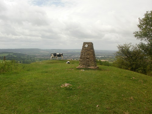 The Trig Point at Haresfield Beacon