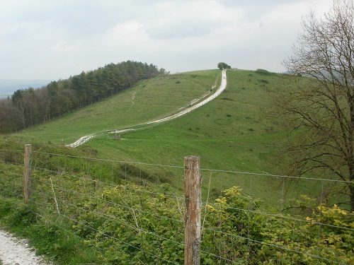 The South Downs Way path was easy to follow