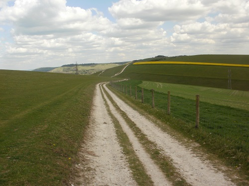 A typical stretch of path along the South Downs Way