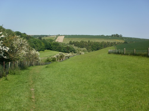 Lovely views along the Yorkshire Wolds Way
